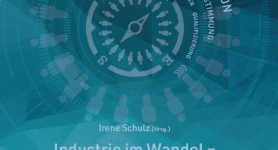 Industrie im Wandel — Bildungsarbeit in Bewegung (Irene Schulz (Hrsg.))